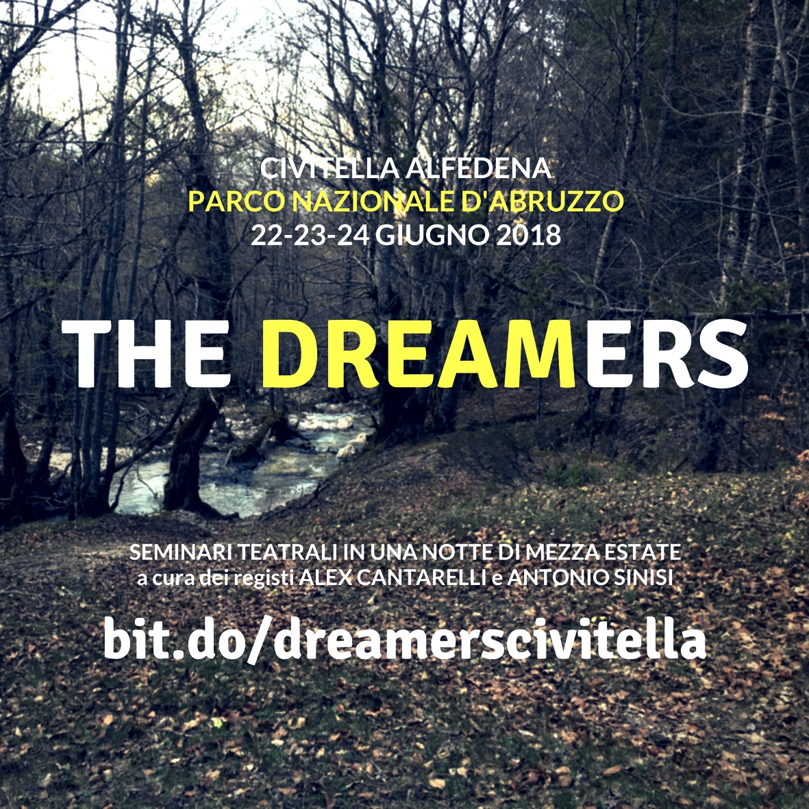 THE DREAMERS site